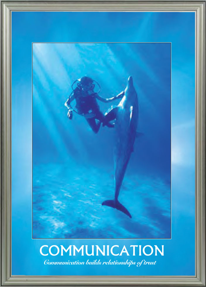 Dolphin - Communication