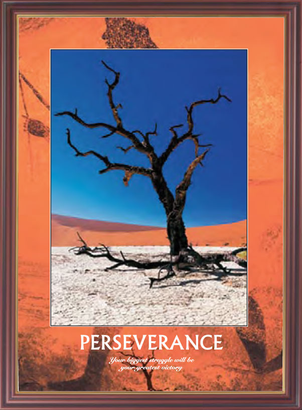 Desert Tree - Perseverance