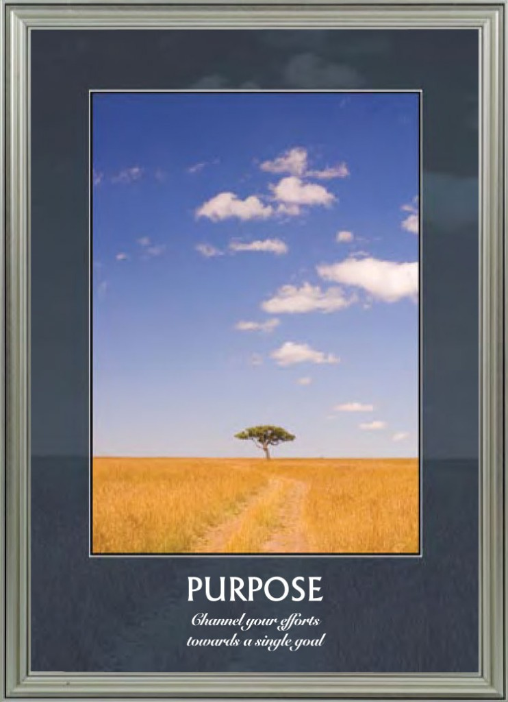 Savannah - Purpose