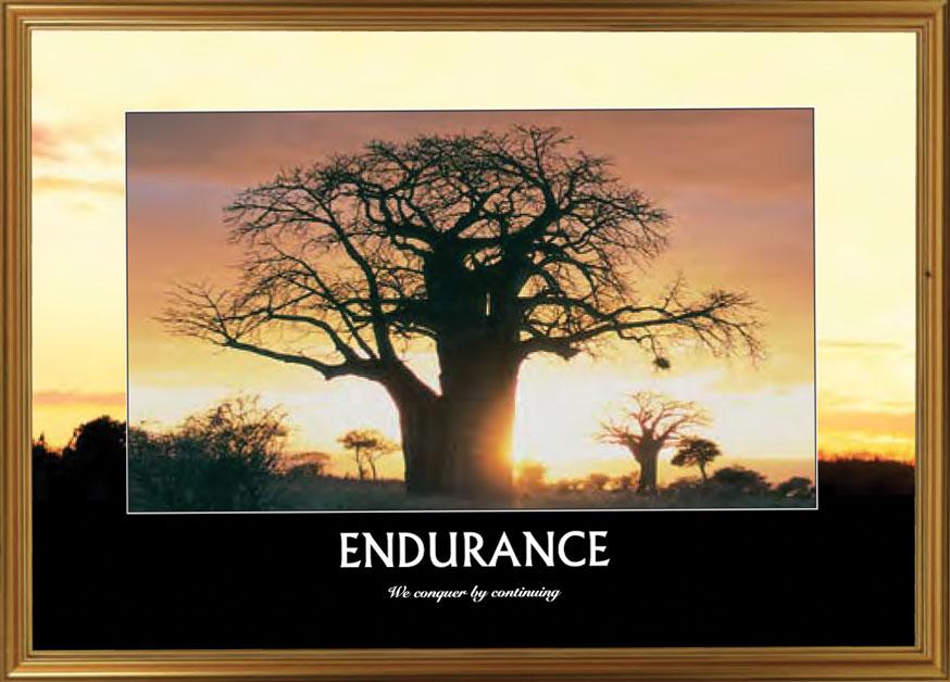 Trees - Endurance