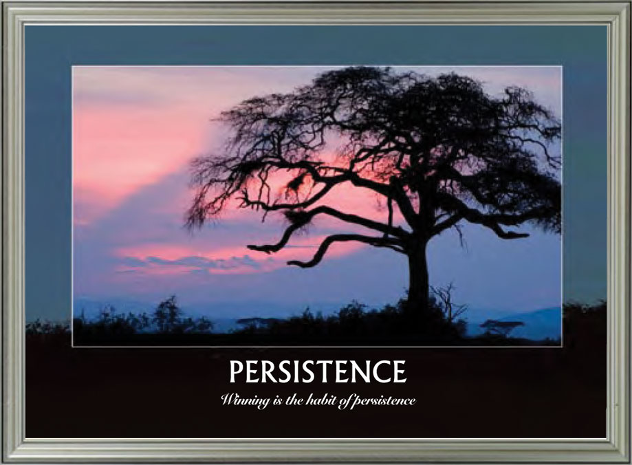Trees - Persistence