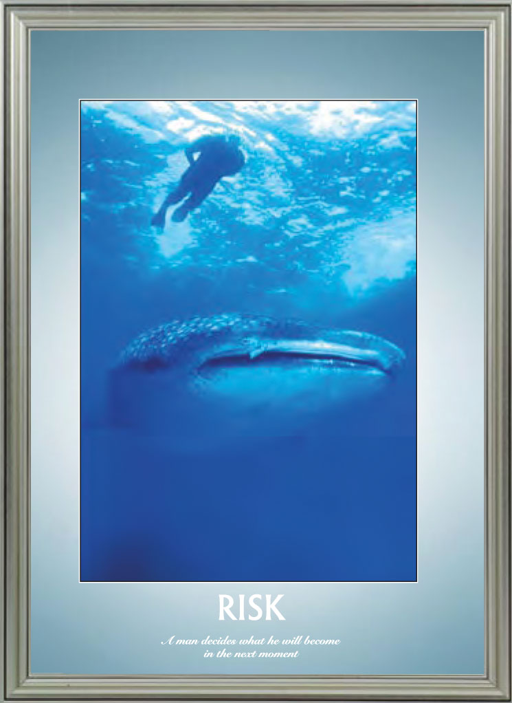 Whale - Risk