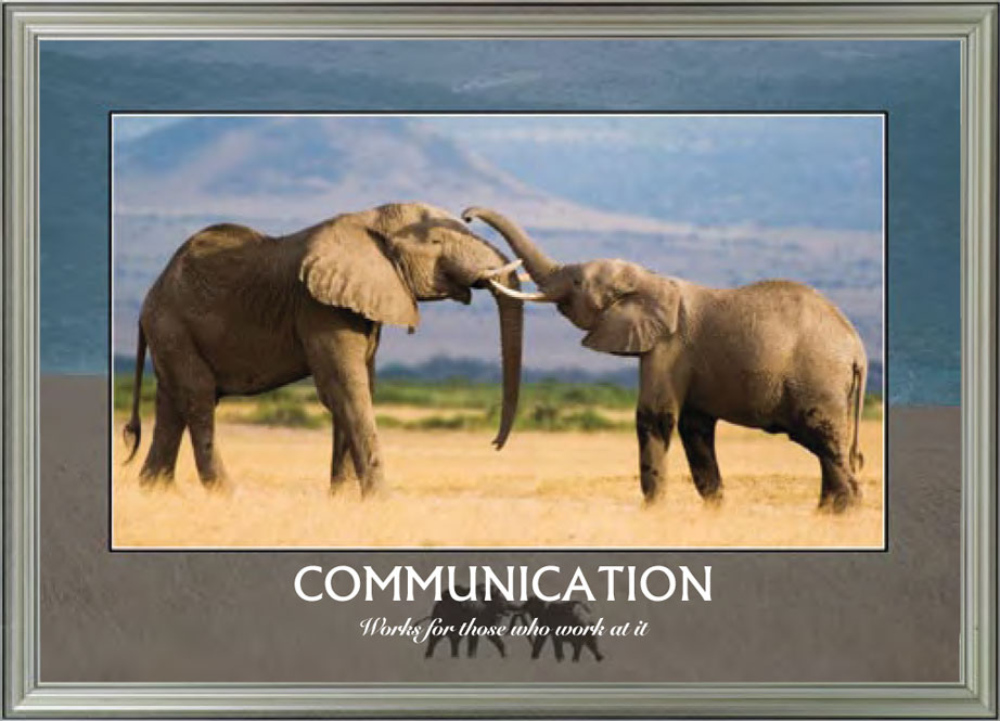 Elephants - Communication