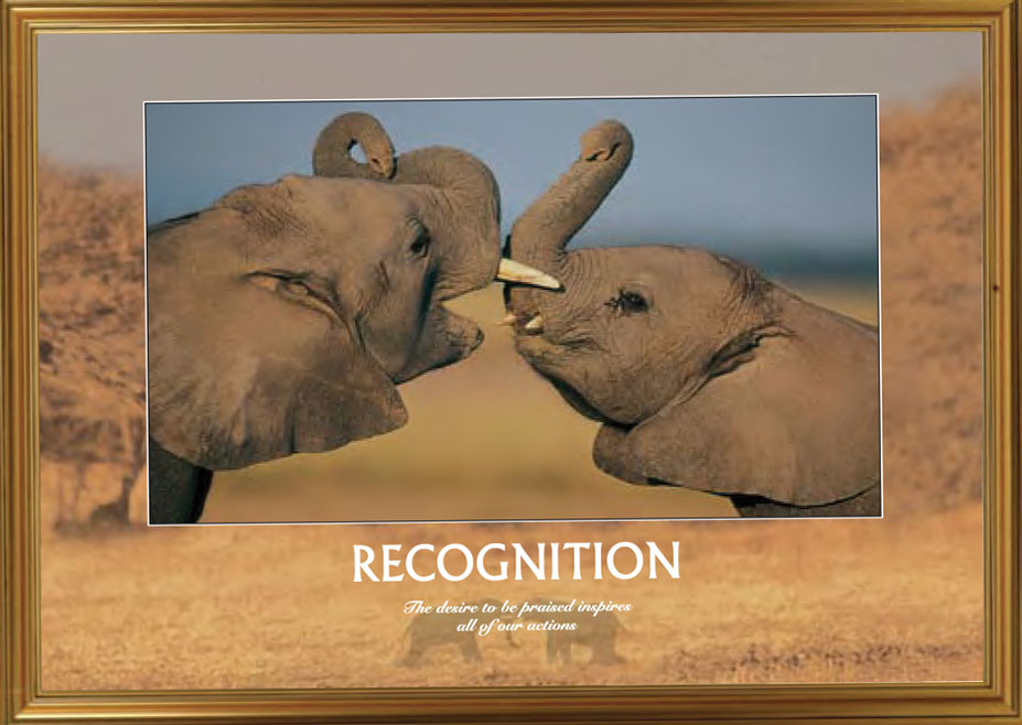 Elephants - Recognition