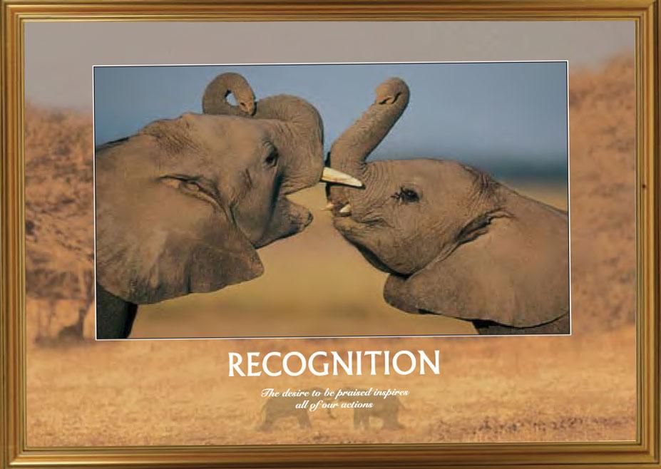 Elephants - Recognition