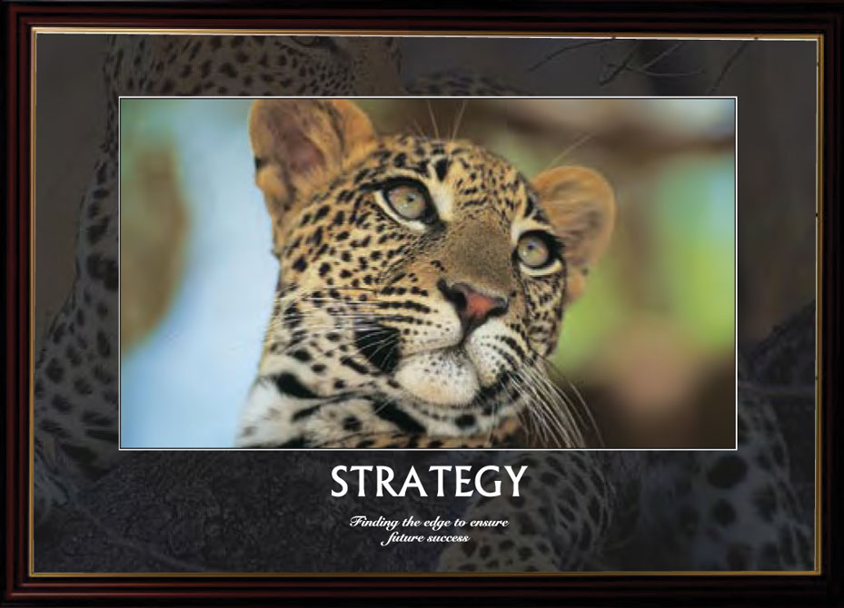 Leopard - Strategy