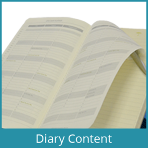 Diary Content