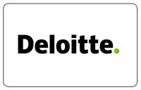 Deloitte Professional Services