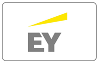 Ernst & Young Consultants